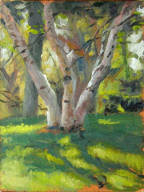 Backyard Plein Air Painting |  Birch Tree Landscape Painting, The Vi Olson Connection