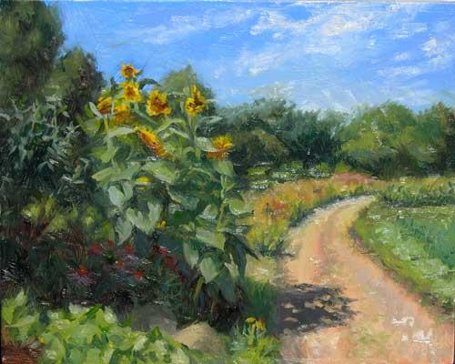 Sunflowers in the Garden | plein air painting in the University's garden