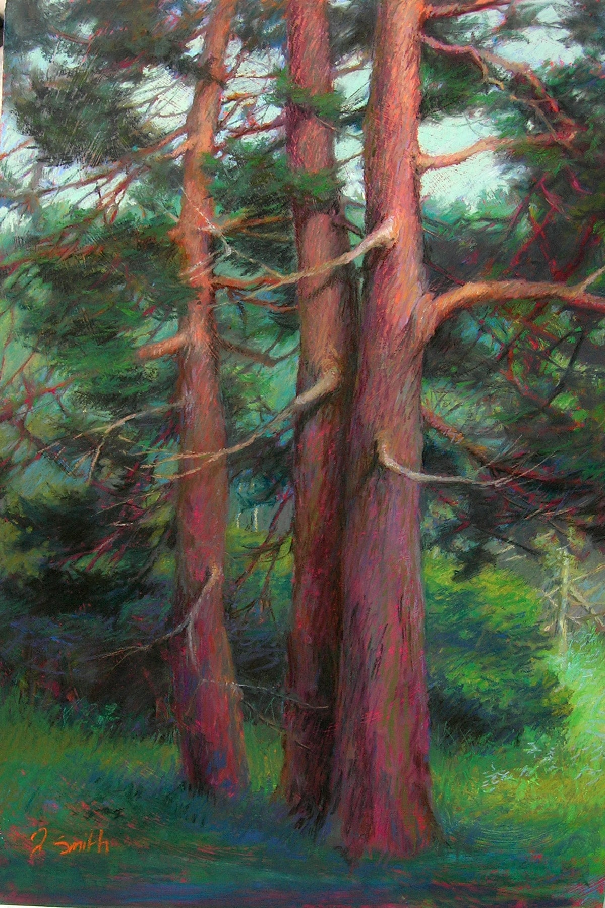 Pine Trio   pastel painting   Jeffrey Smith