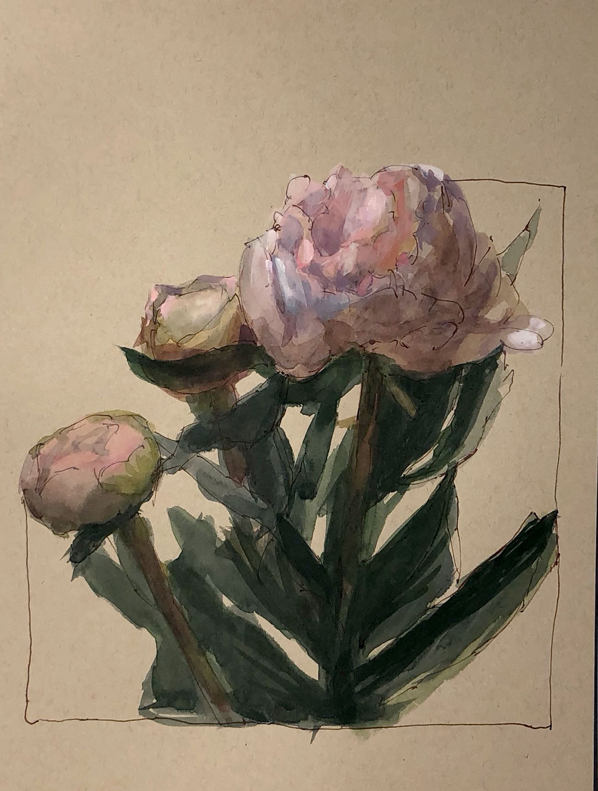 Peonies on Tan Paper | Jeffrey Smith