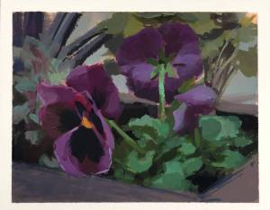 Pansie in a Planter —gouache painting by Jeffey Smith
