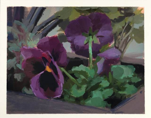 Pansies in a Planter