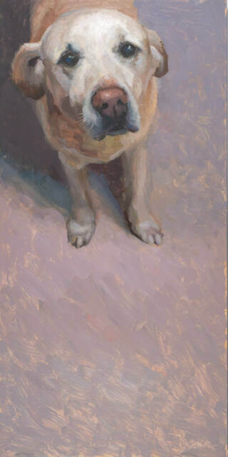oil painting of an older yellow lab by Minneapolis oil painter Jeffrey Smith