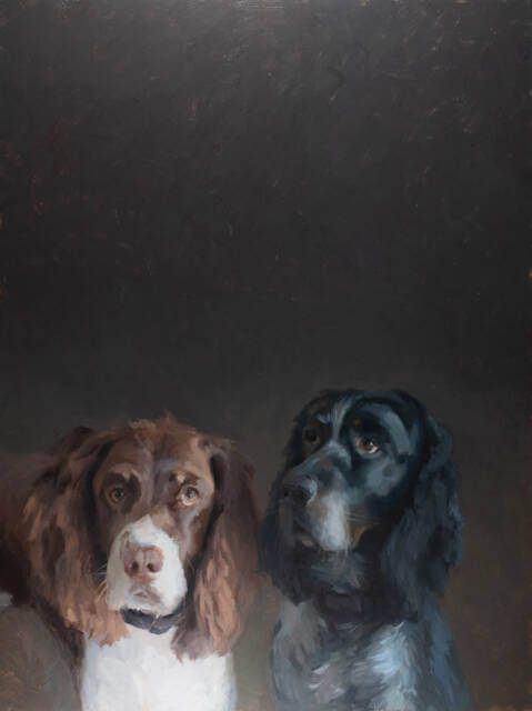 oil painting of 2 springer spaniels against a dark backgroud by Minnesota painter Jeffrey Smith